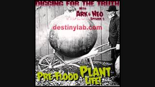 Digging for the Truth with Ark and Neo #3 (Pre flood plants and giant pumpkins) 3/11/14