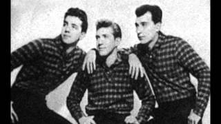 Melodeers - Born To Be Mine - Shelly 161 - 1961