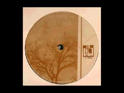 E.R.P.  - Silvae           ( Event Related Potential [Down Low Music] )