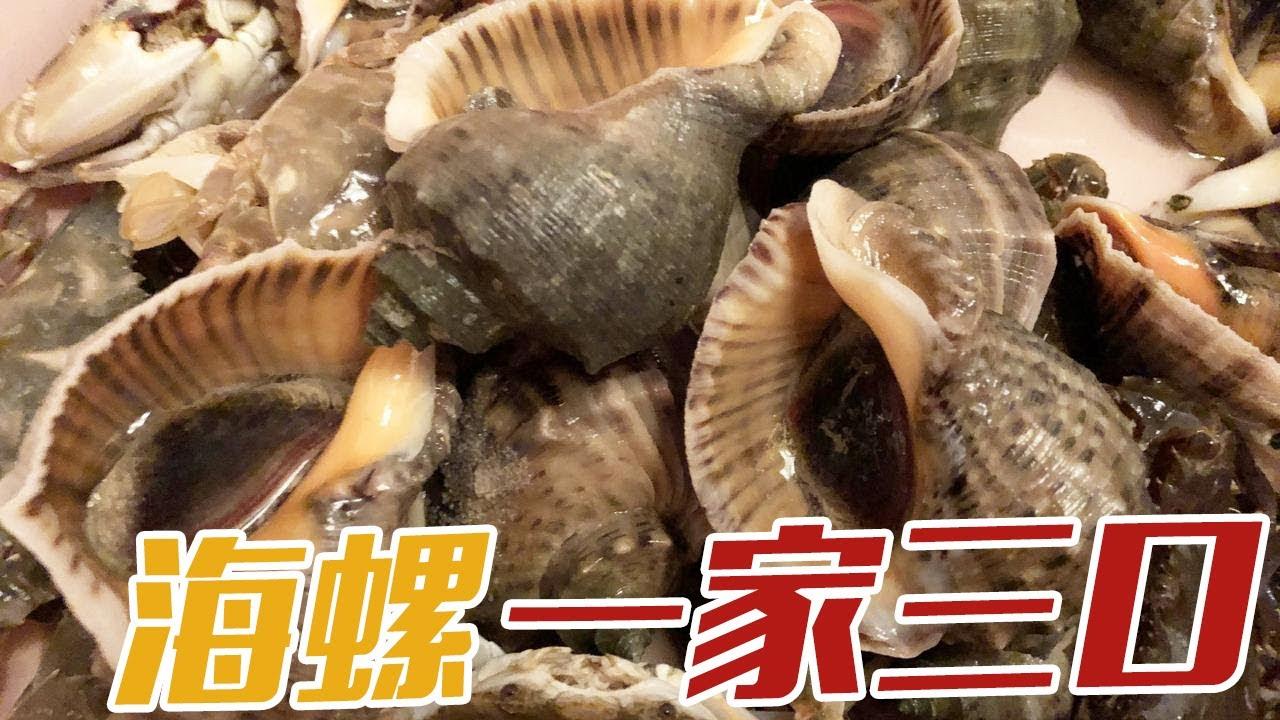 【English sub】小章抓到海螺家族,一家三口一个吸一个,还和一猛货斗智斗勇【赶海小章】
