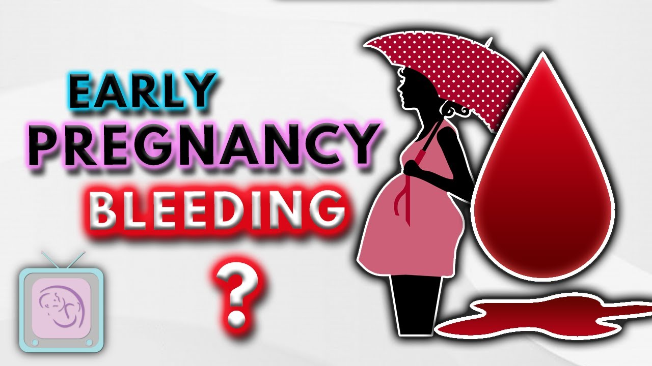 Download Implantation bleeding, early pregnancy bleeding & spotting: 10 Important facts