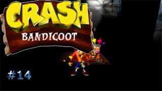 Luces fuera/Crash Bandicoot #14