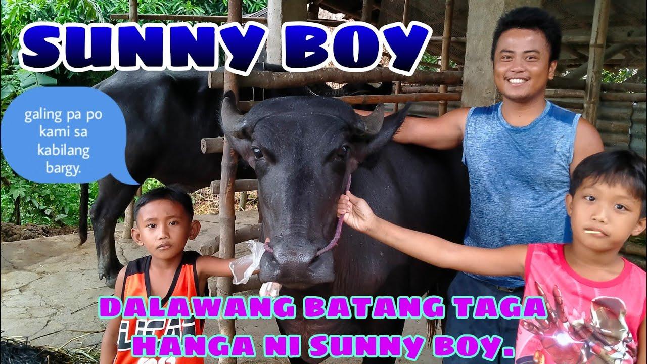 Download UPDATE KAY SUNNY BOY KASAMA MGA BATANG TAGA HANGA NI SUNNY BOY BUHAY BUKID JRTV