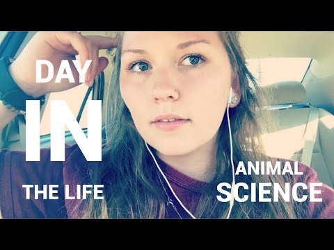 A Day in the Life of an Animal Science Major!
