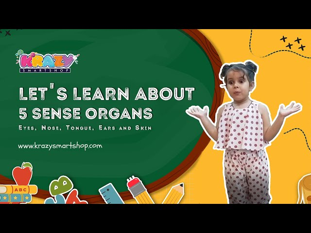 Let's learn about 5 Sense Organs   Learn about human body parts   How to teach about Sense Organs