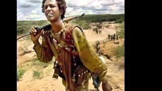 ALmaaz Teferaa new Oromo music kaan koo annii jalalaan kiyyaa tookummaa