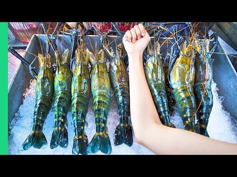 RECORD BREAKING THAI PRAWNS!!! The ULTIMATE Thai Seafood Experience In Bangkok, Thailand!