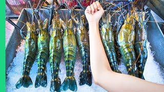 Download RECORD BREAKING THAI PRAWNS!!! The ULTIMATE Thai Seafood Experience in Bangkok, Thailand! Mp3 and Videos