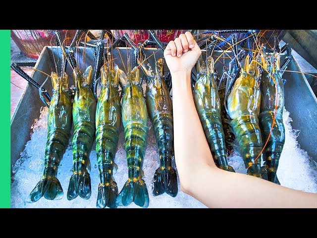 Record Breaking Thai Prawns The Ultimate Thai Seafood Experience In Bangkok Thailand