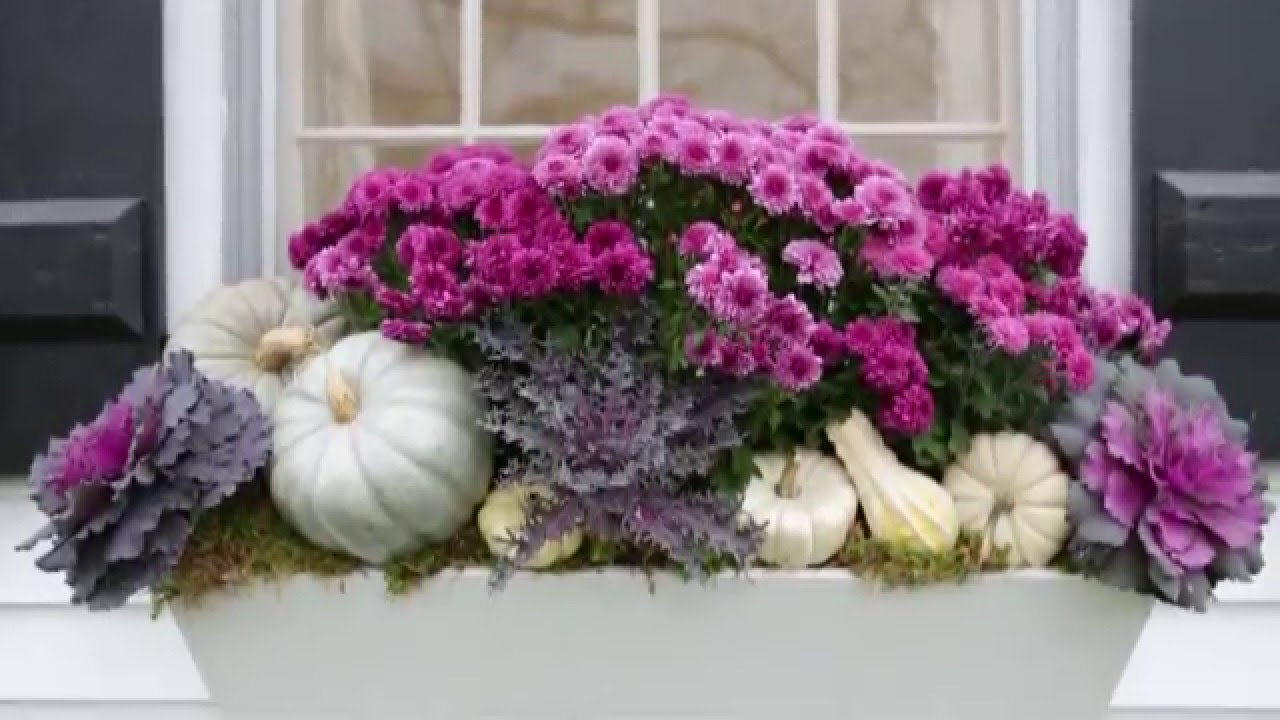 Top Fall Decorating Ideas for Your Window Boxes - YouTube