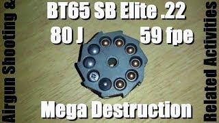 Hatsan BT65 .22, 80 Joules | 59 fpe - Bricks and Iron
