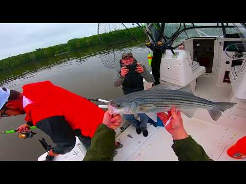 Hudson River Stripedbass Fishing In Poughkeepsie NY