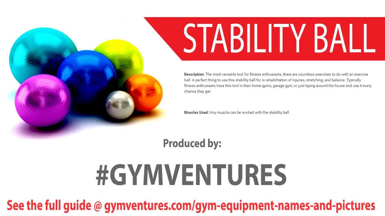Gym Equipment Guide For Beginners