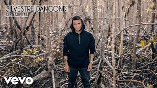 Silvestre Dangond - Si Yo Supiera (Audio)