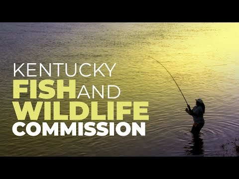 The Kentucky Fish & Wildlife Commission