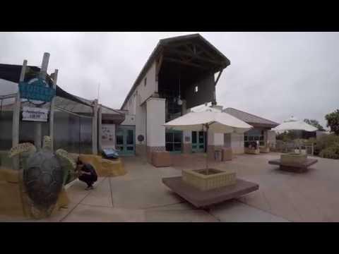 Living Coast Discovery Center SCEDC