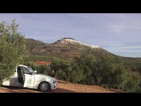一分鐘帶您深度走訪布達馬爾它Butamarta油莊,看見西班牙南部的橄欖好收成!