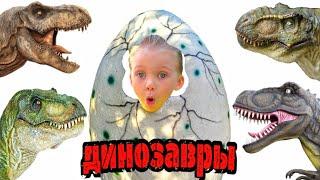 Смотреть видео Парк Динозавров БибиДаша идет к Страшным Динозаврам  Динопарк в Москве онлайн