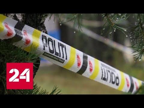 Нападение с дробовиками на мечеть в Осло признали терактом - Россия 24