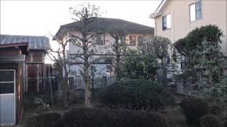 埼玉県行田市の植木屋・三村庭苑です。 植木の剪定・伐採・消毒・抜根・...