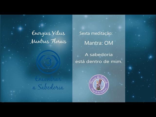 6° Meditação -  Encontrar Sabedoria
