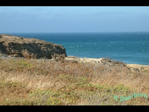 "See the ""Island of the Blue Dolphins"" - San Nicolas Island, CA"