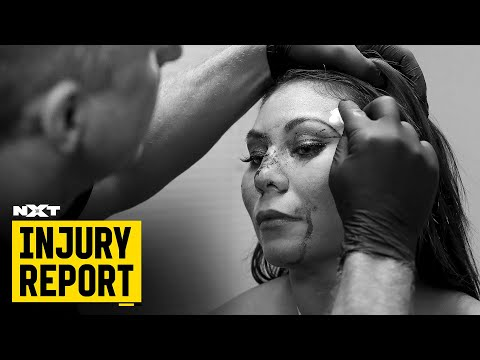 Mia Yim injured in wild Ladder Match: NXT Injury Report, Nov. 14, 2019