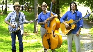 "The Avett Brothers Perform ""Pretty Girl from Raleigh"" 