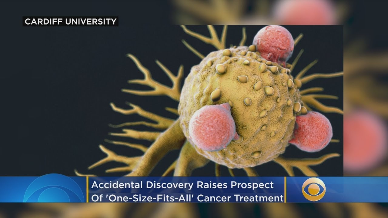 Accidental Discovery Raises Prospect Of 'One-Size-Fits-All' Cancer Treatment