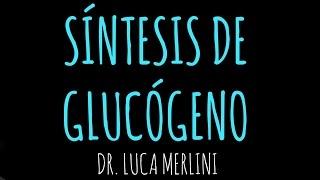 Síntesis de Glucógeno