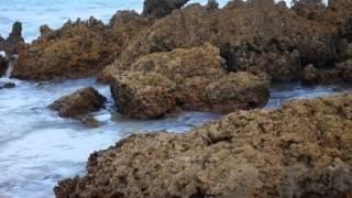 A belíssima Praia de Tambaba por FERNANDO GABEIRA - Tambaba Beach