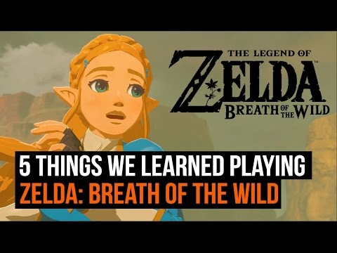 5 things we learned playing Legend of Zelda: Breath of the Wild