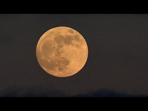 EN VIVO  La noche de la luna de fuego