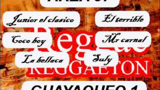 AREA 37 - INTRO GUAYAQUEO 1