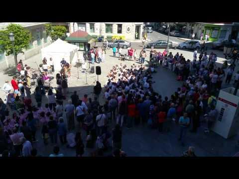 Festa da Música de Vilagarcía
