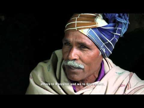 BEHIND THE MIST National Award Winning Documentary