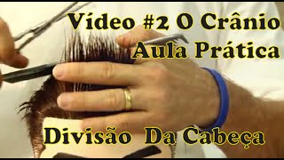 VÍDEO 2 DIVISÃO DA CABEÇA ESTRUTURA DE CRÂNIO CURSO PARA BARBEIROS