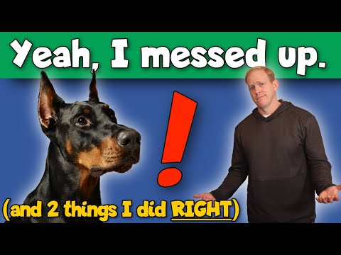 The WORST Mistakes I Made Raising My First Doberman