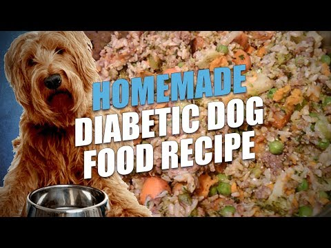 Homemade Diabetic Dog Food Recipe (Cheap and Healthy)