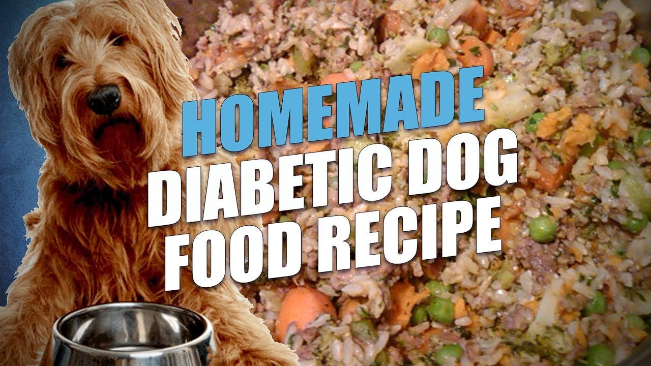 Homemade diabetic dog food recipe cheap and healthy youtube homemade diabetic dog food recipe cheap and healthy forumfinder Gallery
