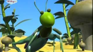 BabyTV - Vegibugs - Spider