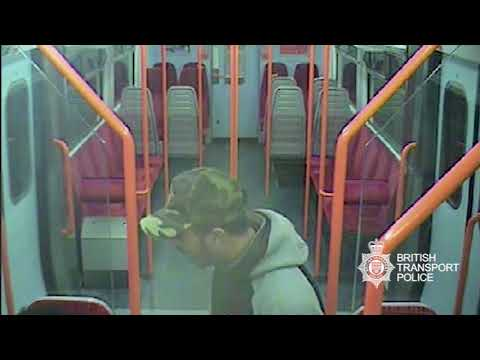 Appeal after violent disorder at Strawberry Hill station - South West London