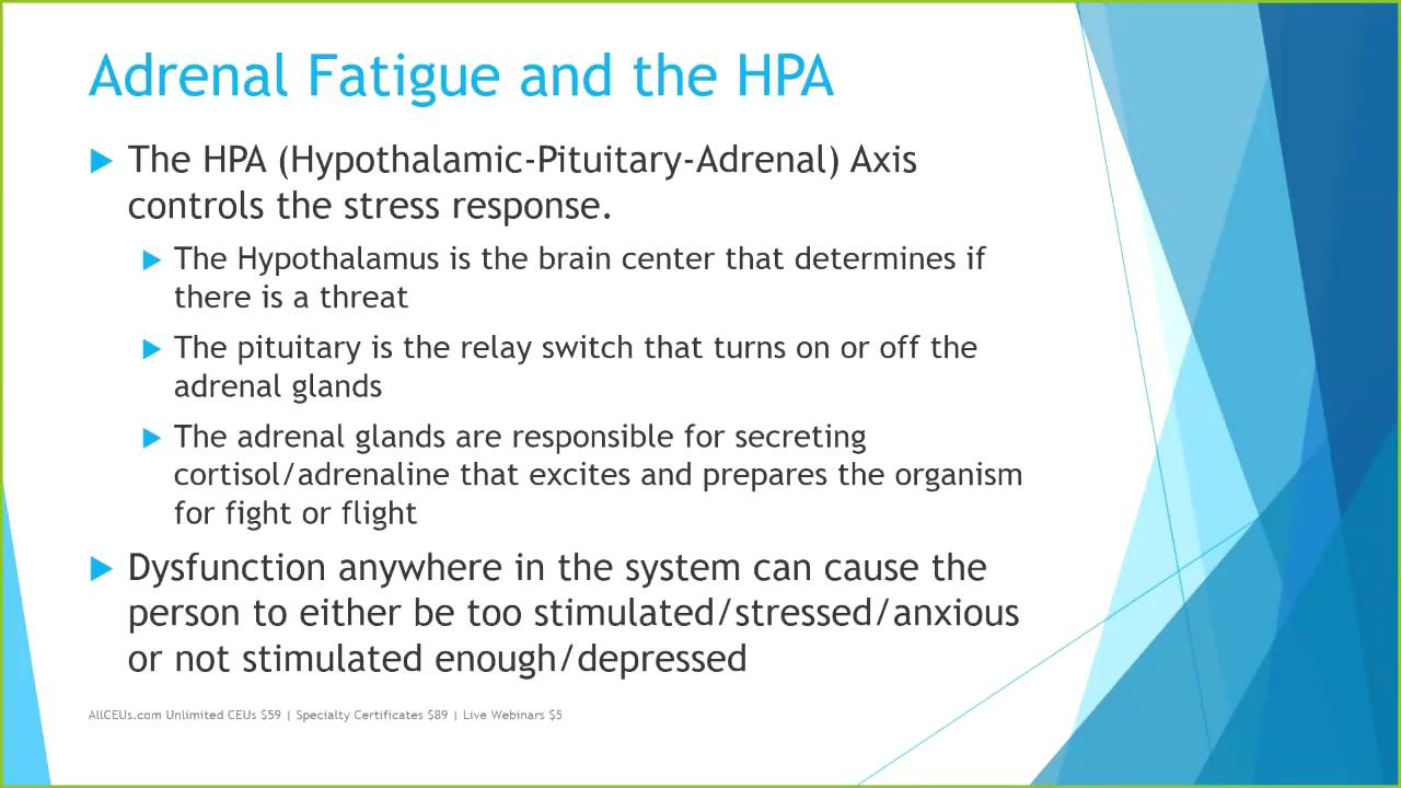 Understanding The Impact Of Adrenal Fatigue On Mental Health And