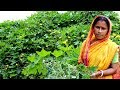 Village Food- Dhundal Shaak Recipe by my Mother- Traditional Vegetarian food recipes