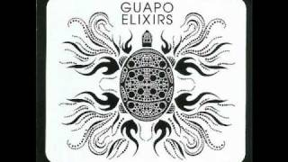 Guapo - Jeweled Turtle