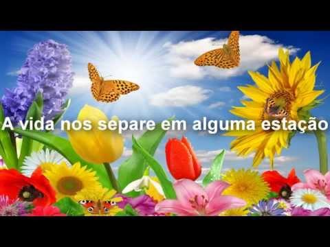 Arrocha Banda Lp Música Flores Em Vida By Dj Manoel Mix