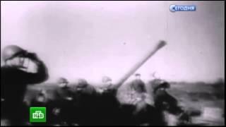 72 годовщине освобождения Воронежа от немецко-фашистских захватчиков посвящается…