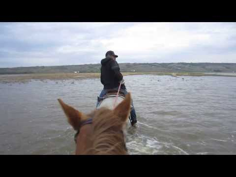 Rescue of Horses from Flood My boots soaked by Andrea Lawrence  1