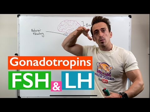 Gonadotropins | Follicle Stimulating Hormone (FSH) and Luteinizing Hormone (LH)