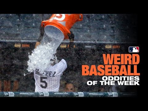 Yolmer Sanchez dumps water on himself! | Weird Baseball: Oddities of the Week (5/30 -6/3)